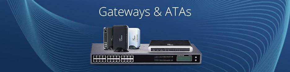 Gateways y Atas Analogos